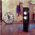 Floor standing speakers Monitor Audio Silver 6