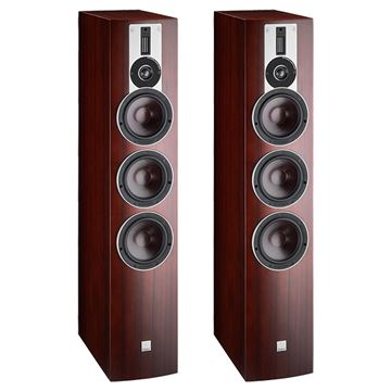 Review and test Floor standing speakers DALI Rubicon 8