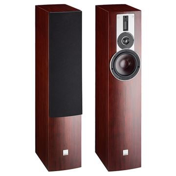 Review and test Floor standing speakers DALI Rubicon 5